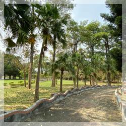 燕巢園區-公園旁散步步道