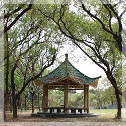 鳥松園區-公園涼亭